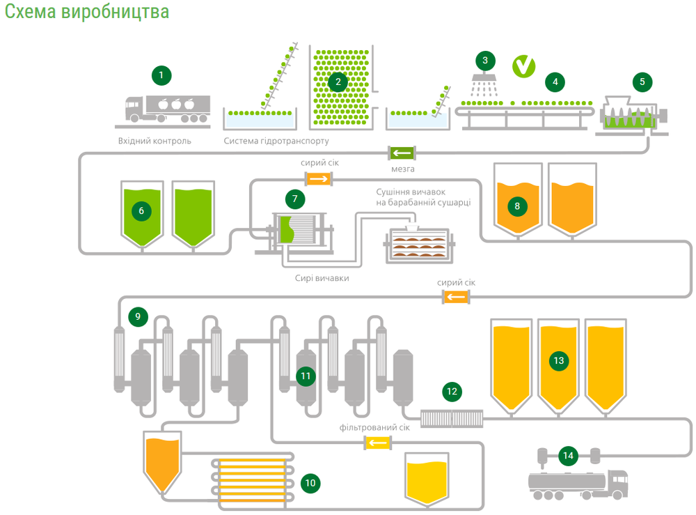 t.b.fruit инфографика