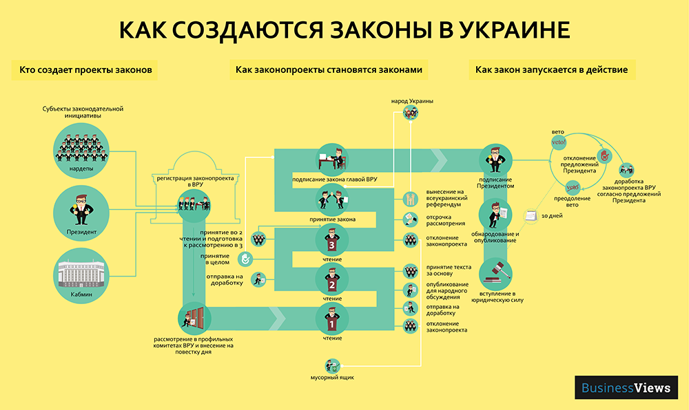 как принимают законы инфографика